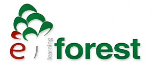 e-learning_forest